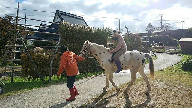 馬と戯れる日  今朝の上世屋はひと味違う  すごい存在感を放つひときわ美しい生き物が朝日をバックに草をムシャムシャ  昨日から来てくれたブチくんと馬子さんに村人も皆仕事の手を休めて興味津々。  たくさん乗せてもらってたくさん馬レクチャーをしてもらって素敵な経験をさせてもらいました。  本当に人懐っこくて優しいブチくんに、 皆いいなぁーと馬が欲しくなりそう。  世屋に馬はとても素敵な風景でした。  また来てねーまた春来るねと、6時間かけてまた帰って行きました。  ウラニシ雨心配だったけれど無事にお家に着いたみたいで良かった!  長旅お疲れさま ゆっくり休んでね  いとをかし アユミ  kamiseya.com